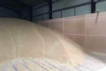 Grain drying floors