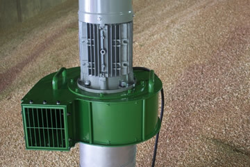 Grain pedestals and fans