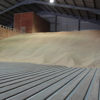 HARDWOOD GRAIN DRYING FLOOR